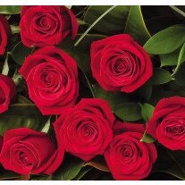 12 Red roses bouquet