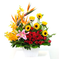 Bright Mixed Arrangement